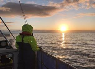 Offshore surveys